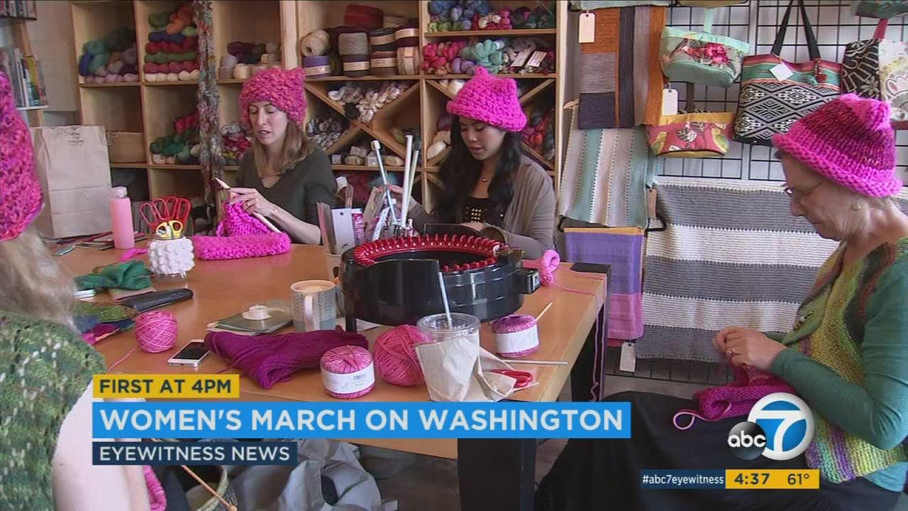 Image result for women march on washington dc january 2017 pink caps