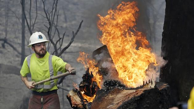 Utility worker Michael Quinliven shovels dirt onto a burning stump so he can cut down the charred ponderosa pine next to it Monday, Sept. 14, 2015, in Middletown, Calif. <span class=meta>AP Photo/Elaine Thompson</span>