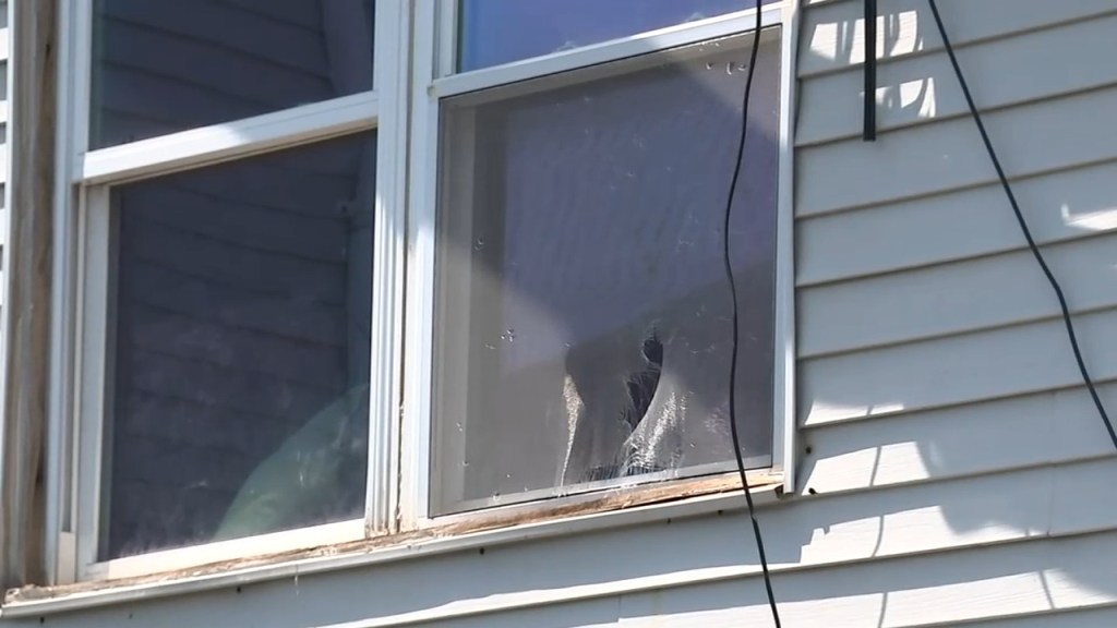 New Jersey boy boy mauled to death by family dogs after falling from window, police say