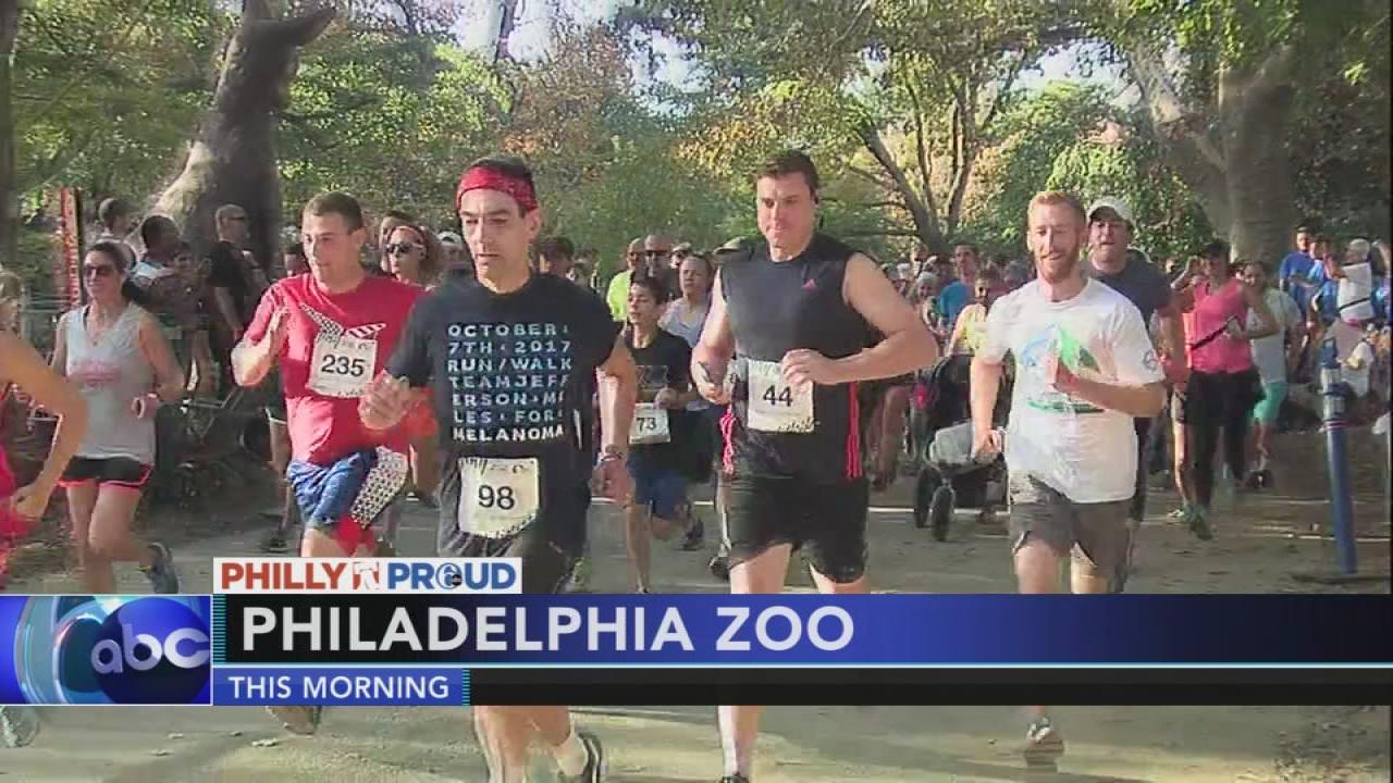 Fox Philly Morning Traffic