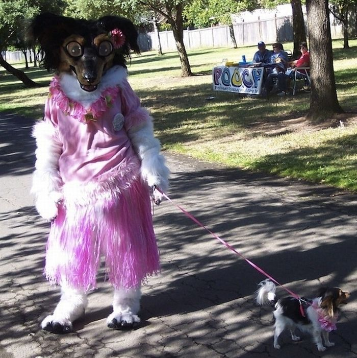 The Worst Fursuit Ever 4 Pics