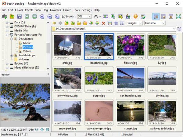 Download FastStone Image Viewer (PortableApps) v6.5 ...