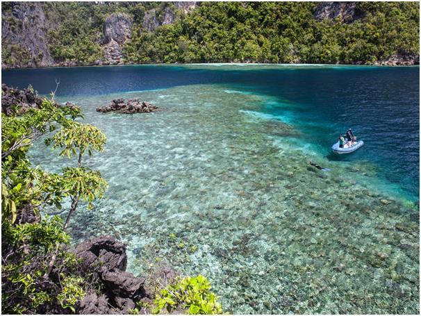 تقع جزر راجا أمبات على أطراف مقاطعة بابوا الغربية في إندونيسيا، يوجد بها ثلاثة أرباع أنواع الشعاب المرجانية في العالم، وتحتوي