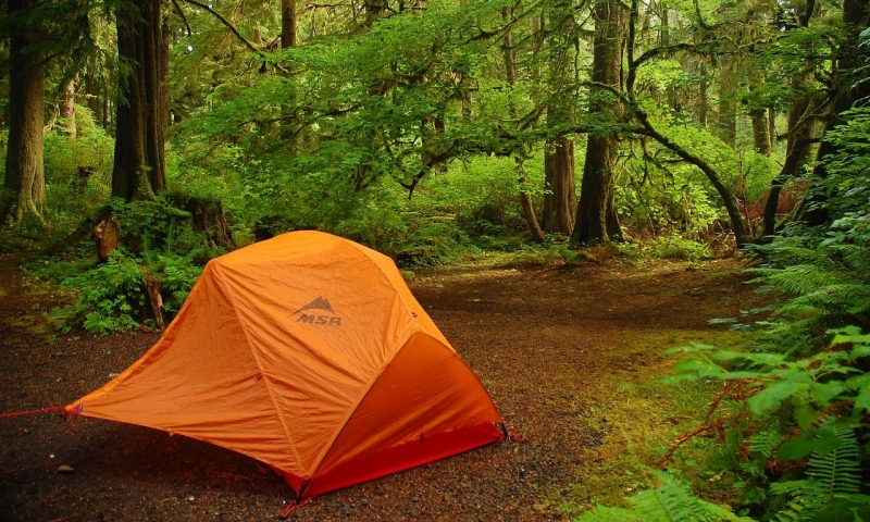 Mora Campground Olympic National Park Alltrips