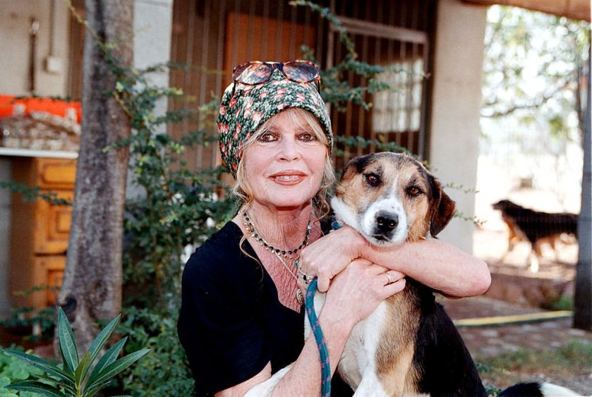 Animal rights activist Brigitte Bardot visits her dog shelter