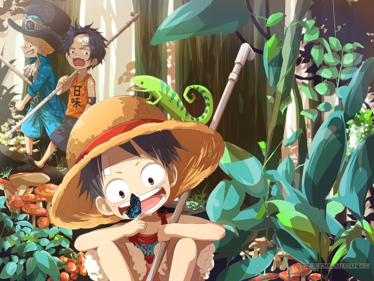 One piece hq wallpaper 1920x1080. one piece anime ace anime monkey d luffy portgas d ace ...