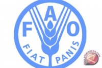 FAO apresiasi pertumbuhan sektor pertanian Indonesia