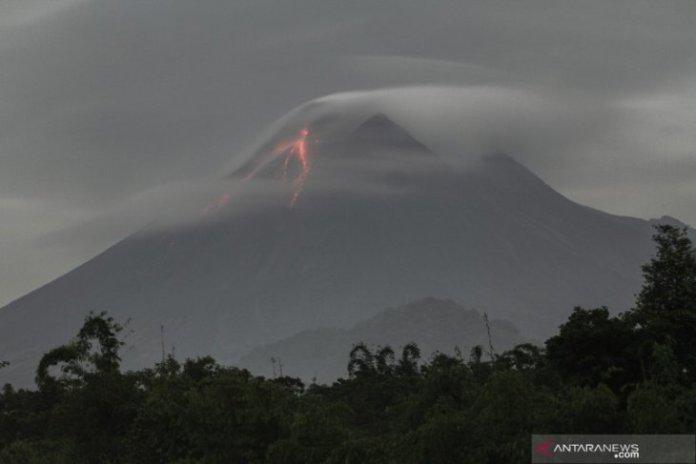 Forest Restoration Following Mount Merapi Eruption To Take Few Years Antara News