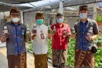 Peringati Hari Kartini, PLN UID Bali salurkan bantuan Kelompok Wanita Tani Permata Nusa Dua