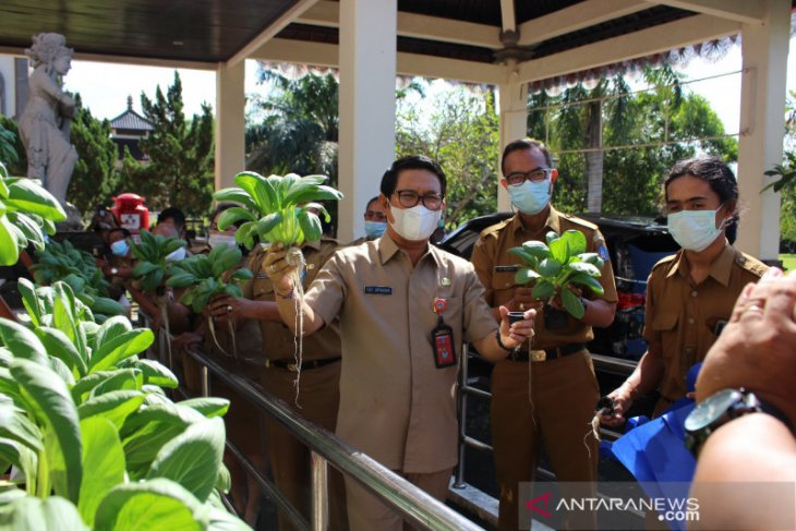 Pemkab Badung motivasi generasi muda untuk geluti pertanian