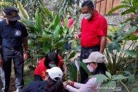 Pemkab kembangkan Kebun Raya Gianyar jadi destinasi wisata edukasi