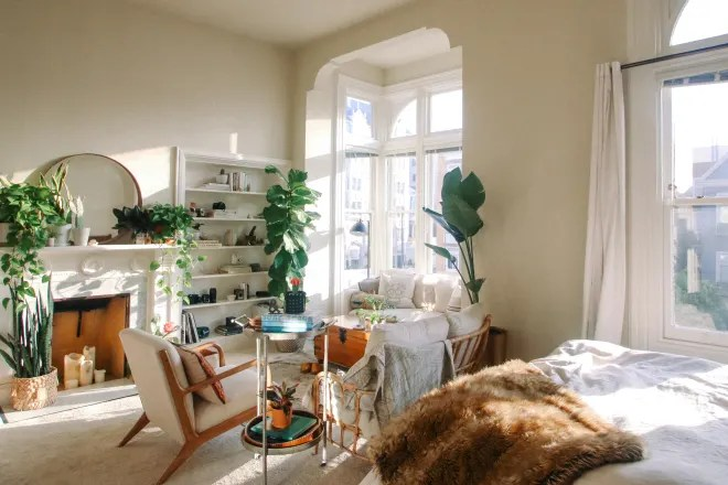 A 400-Square-Foot, Sunny San Francisco Studio Filled with Plants