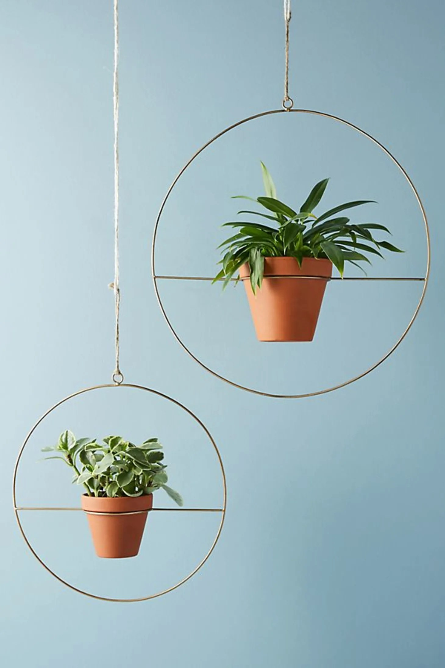 The Best Stylish Indoor Hanging Planters of 2018 ... on Hanging Plant Pots Indoor  id=26452