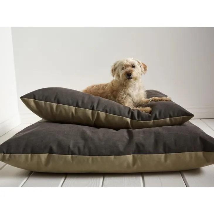 the best stylish dog beds of 2021