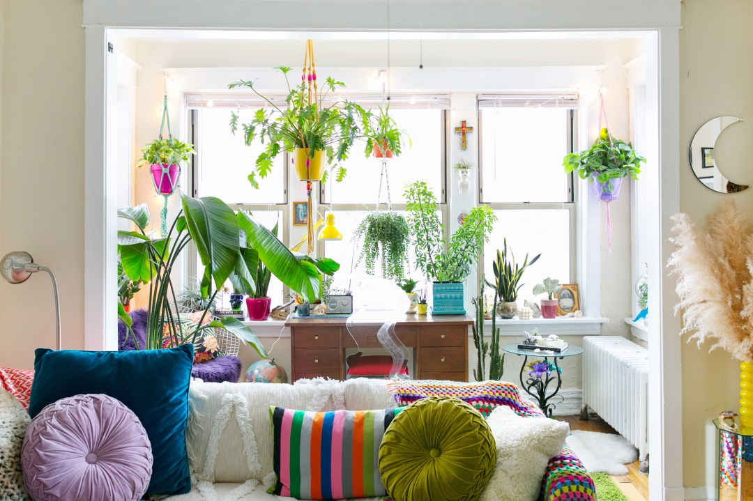 6 Hanging Wicker Baskets That Will Make You & Your Plants Happy