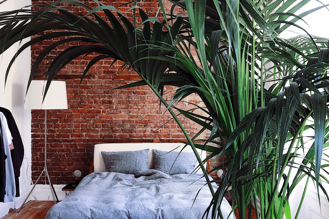 Behold Big Plants, Beautiful Views, and Bold Brick in This Sleek NYC Loft