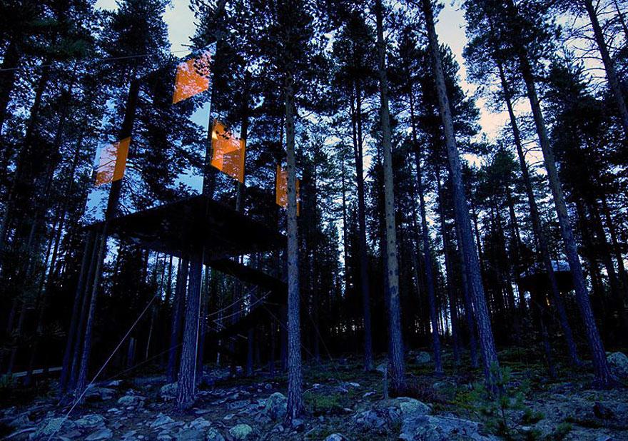 kuća na drvetu od stakla