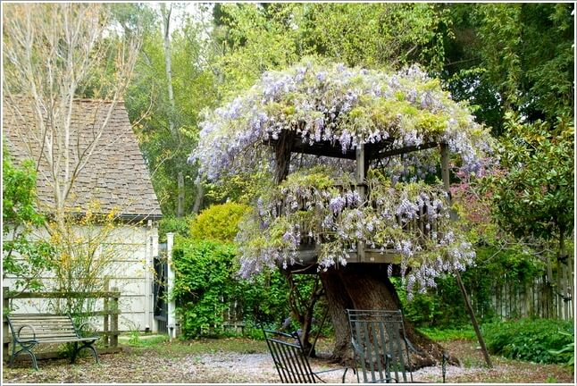 10 Absolutely Wonderful Tree Stump Landscaping and Decor Ideas on Backyard Landscaping Ideas With Trees id=48149