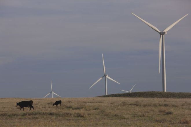 GettyImages-530971608-800x533 Amazon warns Texas: Don't pass bill that would drive up wind power costs | Ars Technical