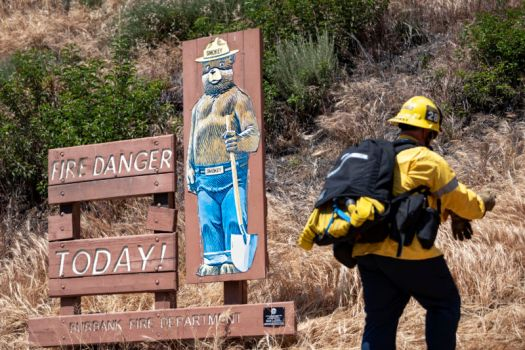 Smokey the Bear sign next to a firefighter.