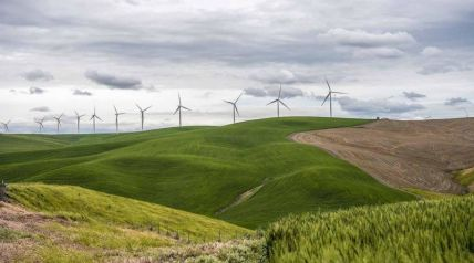 Image of wind turbines on a ridge