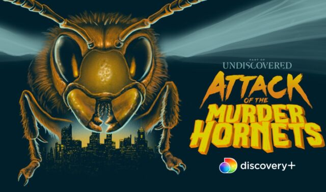 <em>Attack of the Murder Hornets</em> is a nature documentary viewed through the lens of science fiction and horror.