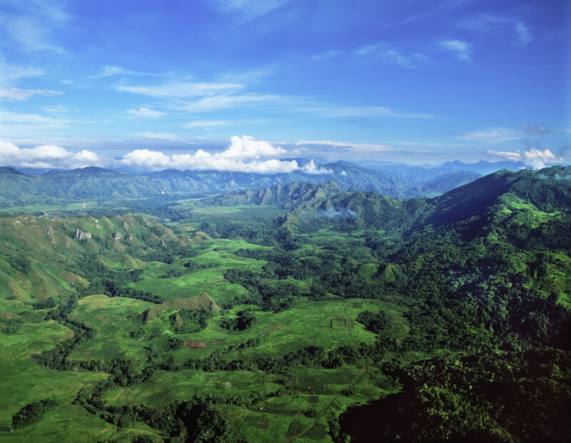 The highlands of Papua New Guinea.
