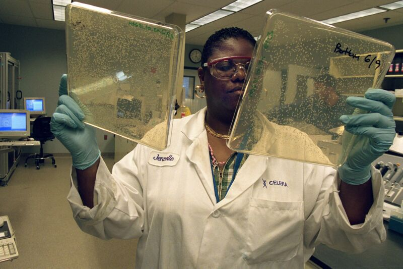 Image of a woman holding bacterial plates.