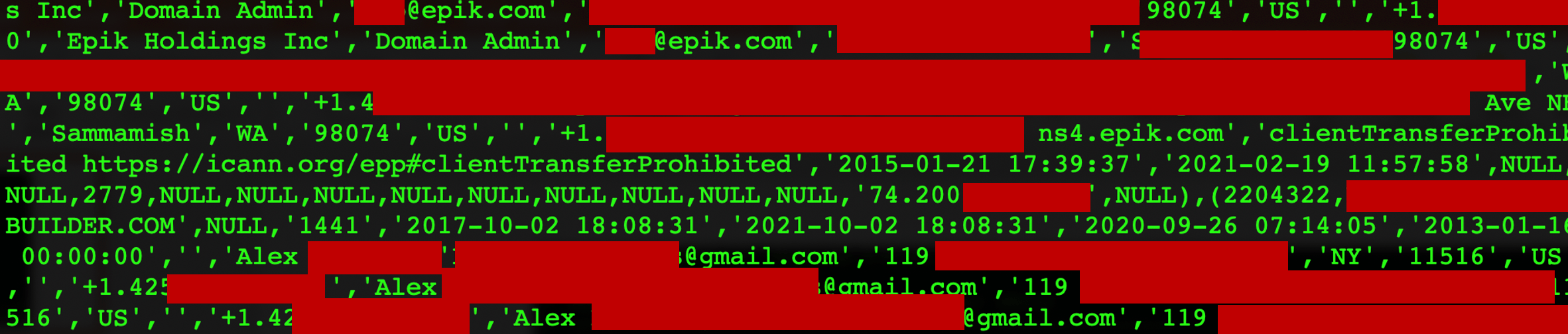 Epik's WHOIS database, part of the 180 GB leak.