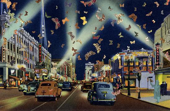 Photo courtesy of www.artlog.com