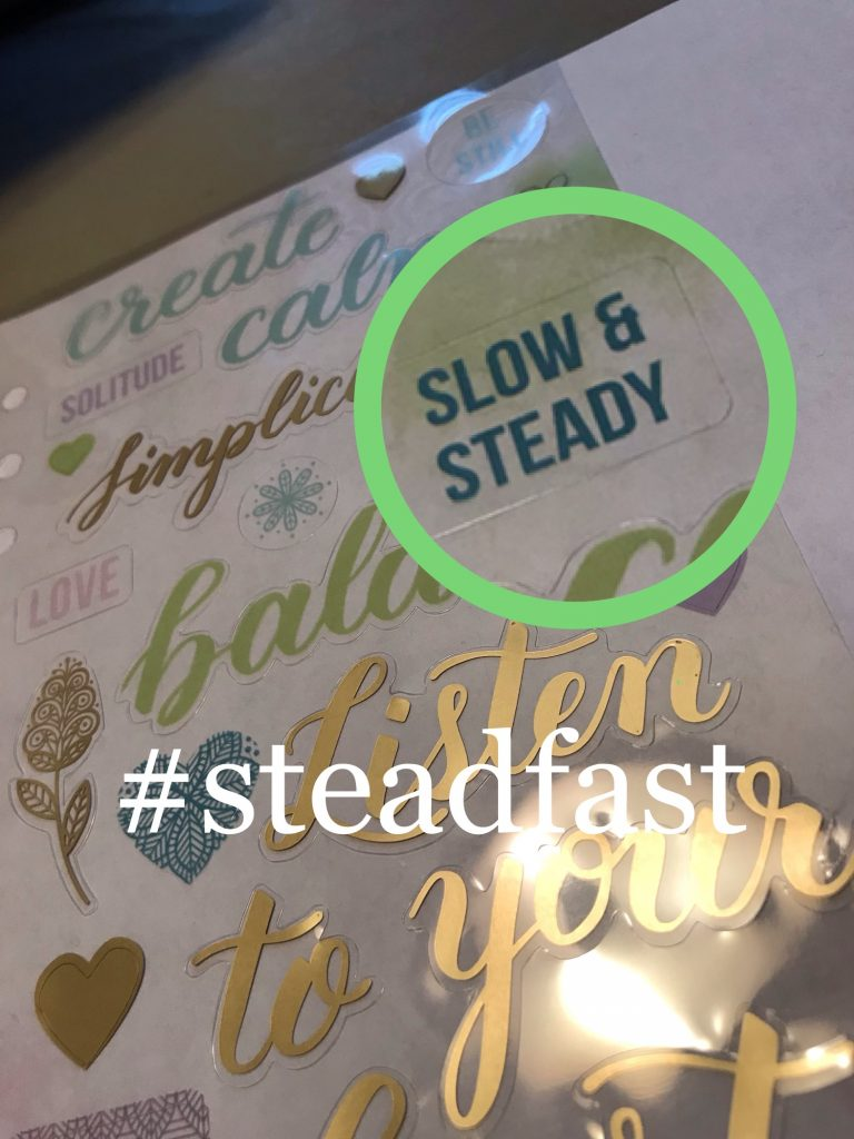 steadfast in my writing by Denise M. Colby