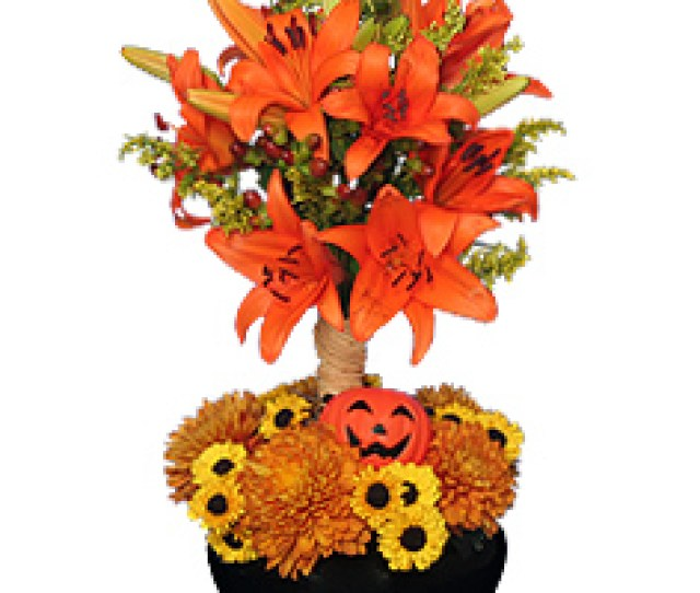 Orange You Special Floral Topiary In New Milford Ct Ruth Chase Flowers