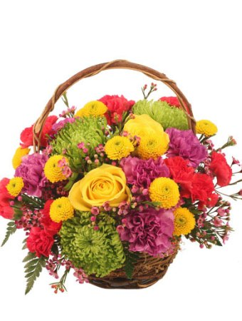 Flower delivery bonita springs fl choice image flower decoration ideas a flower boutique bonita springs fl gallery flower decoration ideas flower shops in bonita springs fl mightylinksfo