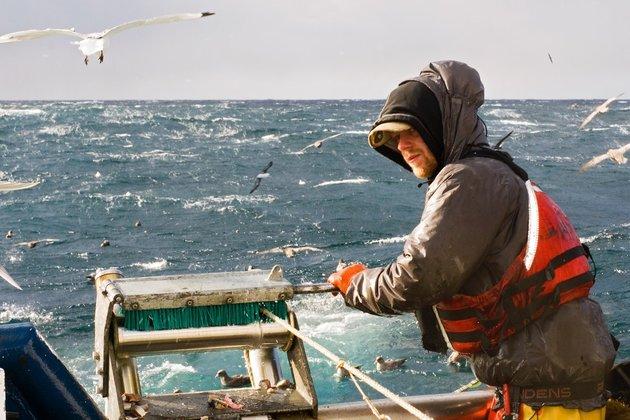European Union's external fishing activities under scrutiny