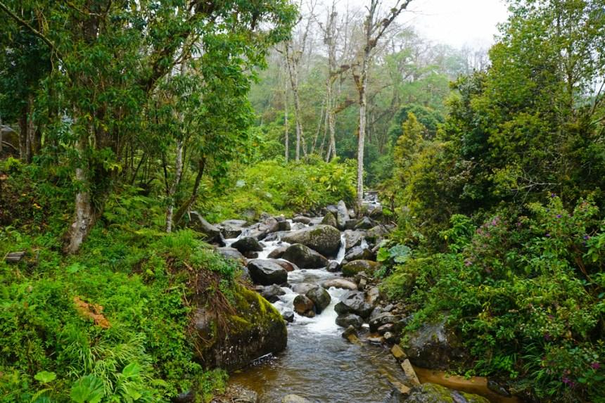 Parco nazionale dell'amicizia in Costa Rica