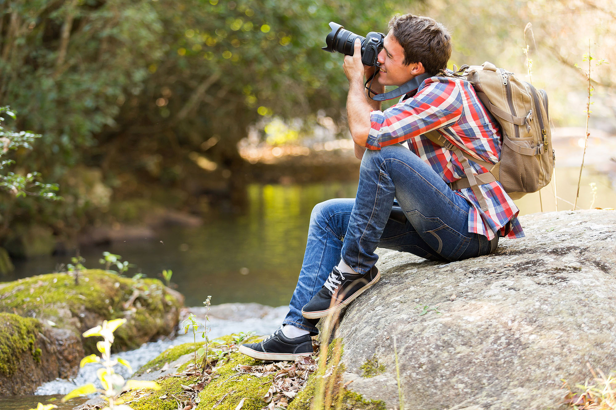 View our roundup of the best mirrorless cameras for bird photography. Photo by michaeljung/Shutterstock