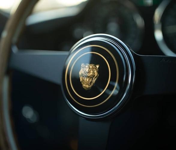 jaguar-e-type-low-drag-coupe-14.jpg