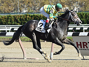 Horse Racing | Horse Racing Entries | Horse Racing Results ...