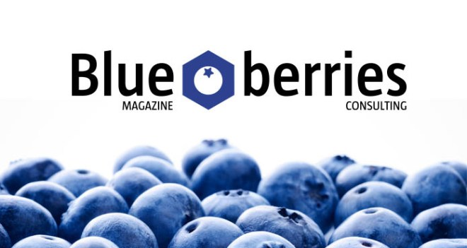 Who we are | Blueberries Consulting
