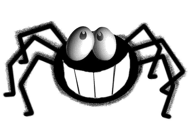 Image result for spider