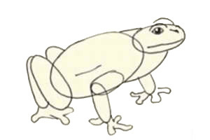 Boring probably a frog alone, doubly, swim with no one. Draw him a friend. We will give the baby complete image freedom, but at any moment ready to help. We provide organizational assistance: ask what you need to draw.