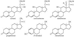 steroid | Definition, Structure, & Types | Britannica