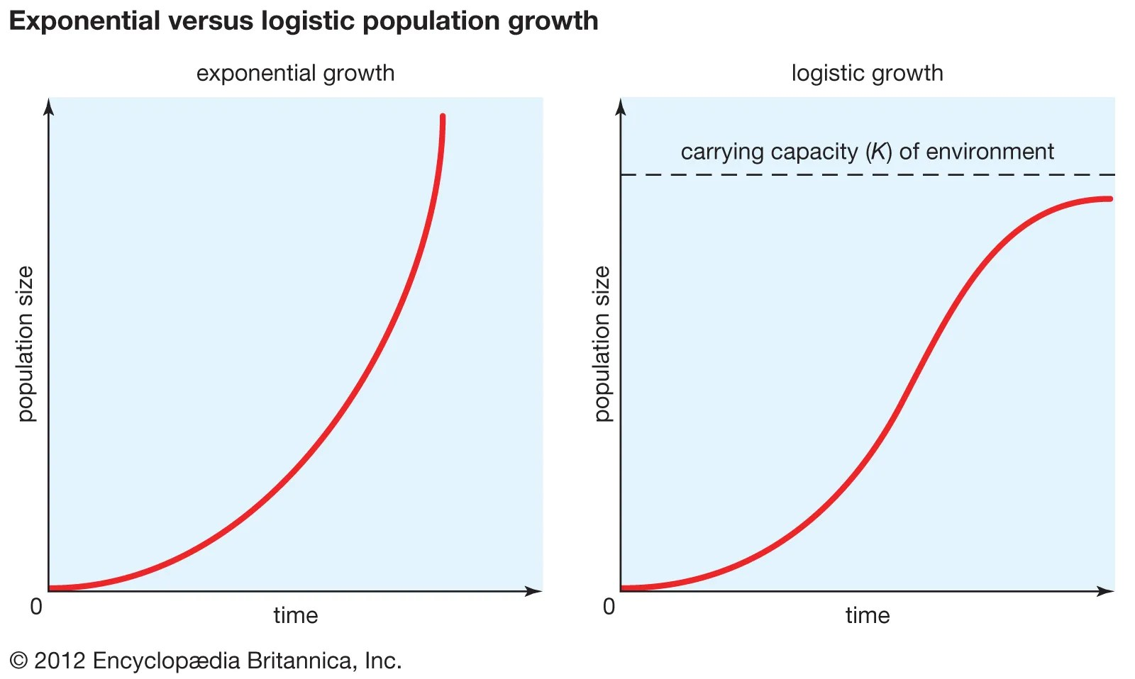 Exponential Population Growth Equation Ecology