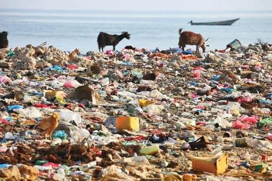 plastic pollution | Sources & Effects | Britannica.com