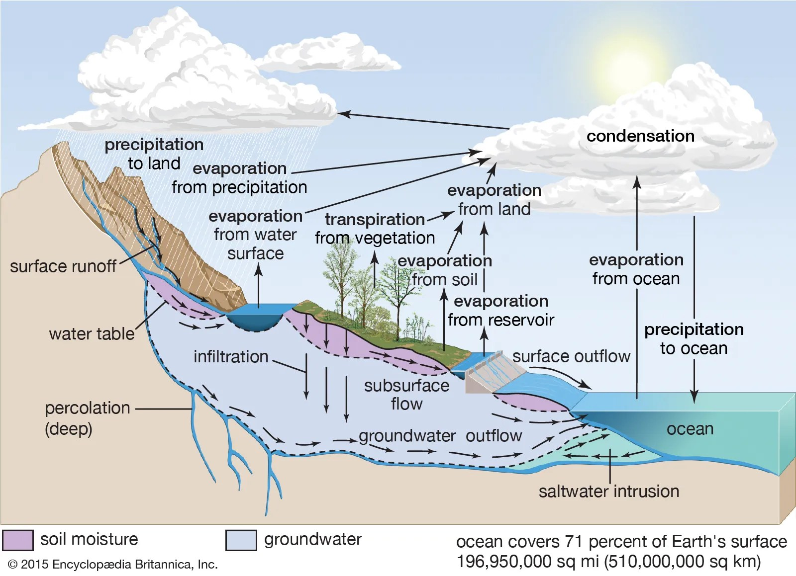 Water Cycle Diagram Easy