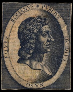 Image result for studying ovid