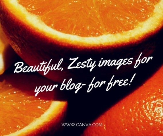 Canva free images