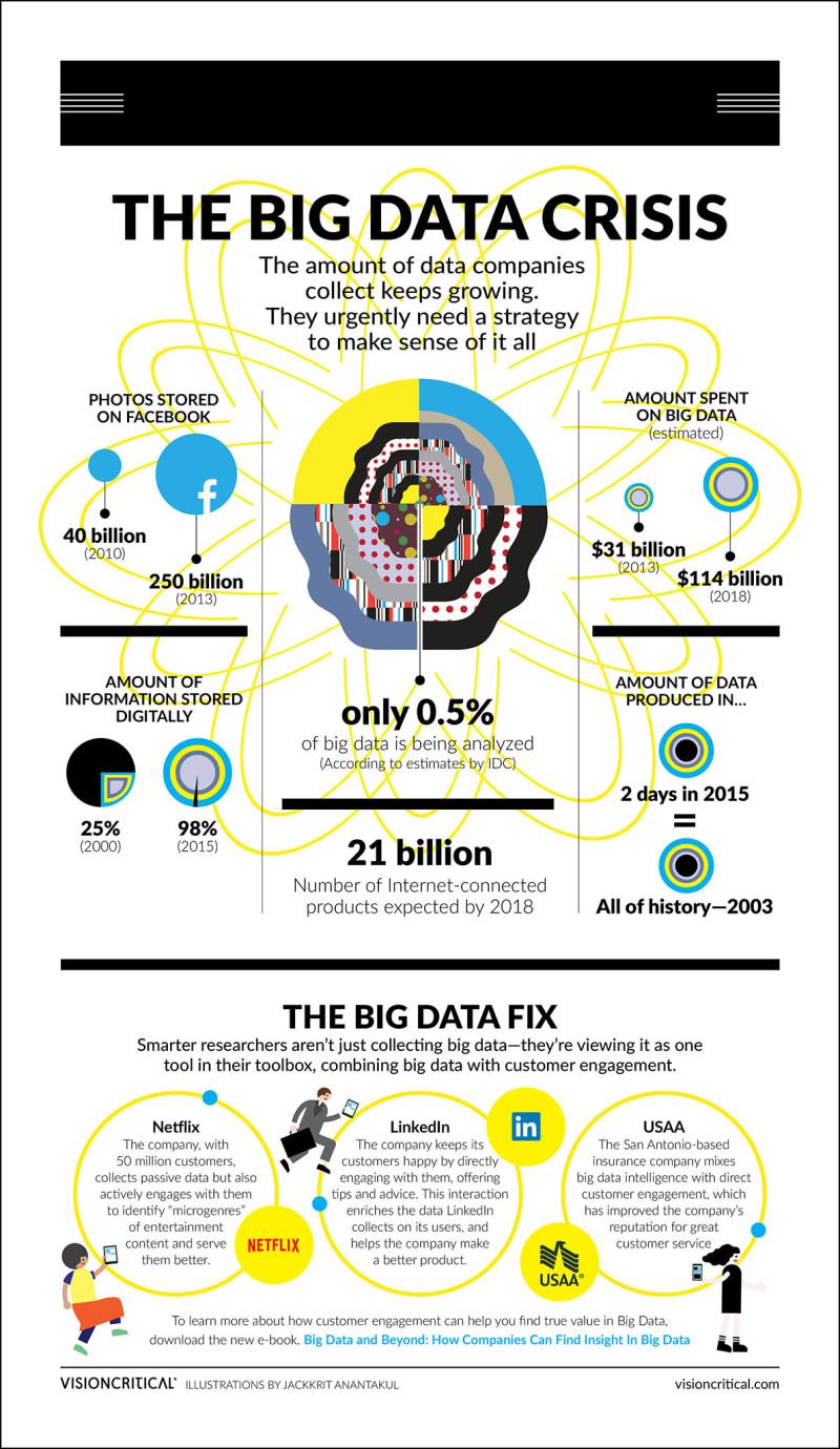 Data Analyst Infographic Resume