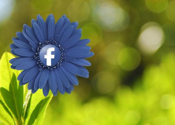 Facebook hacks, Facebook, lead generation