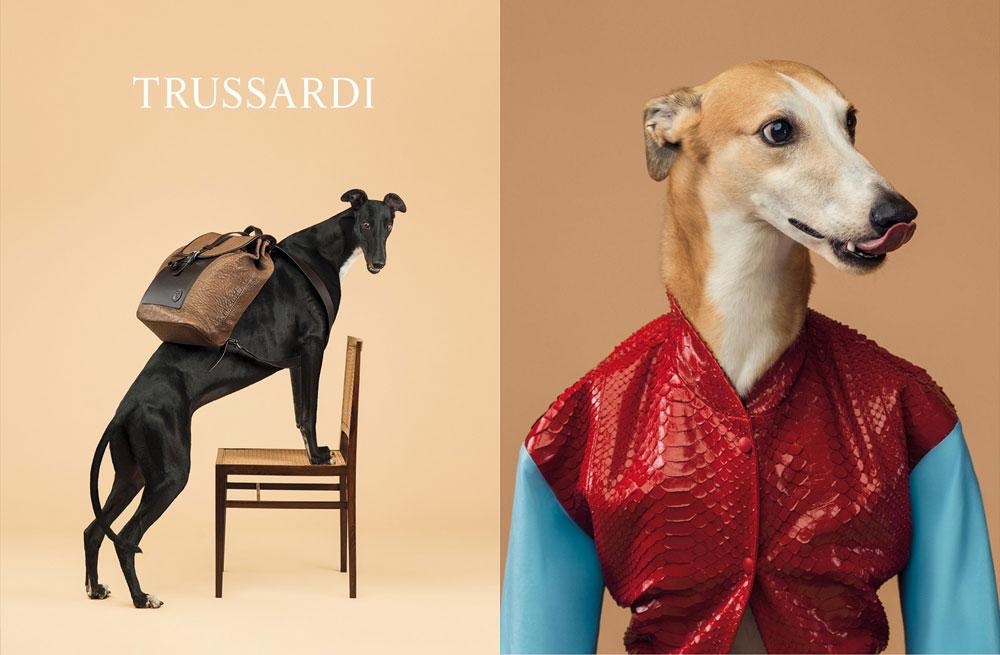 Trussardi 2014 Spring/Summer Campaign